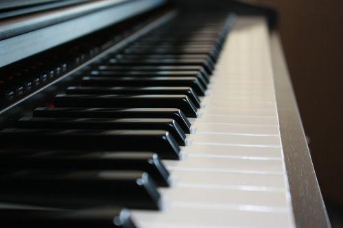 fortepijonas,klaviatūra,raktai,juoda,muzikinis,instrumentas,muzika,pianistas,kompozitorius,žaisti,pramogos,harmonija,melodija,žaisti