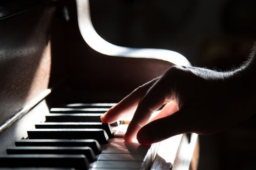 fortepijonas, ranka, žaisti, muzika, klaviatūra, instrumentas, klasikinis, melodija, garsas, koncertas, pirštas, spektaklis, pramogos, praktikuojantis, suaugęs, Iš arti, išsamiai, makrokomandas