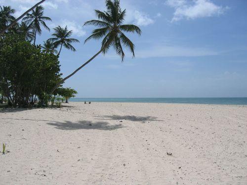 vaizdingas,vienišas,papludimys,nuostabus paplūdimys,svajonių šventė,delnas,smėlio paplūdimys smėlis,vanduo,jūra