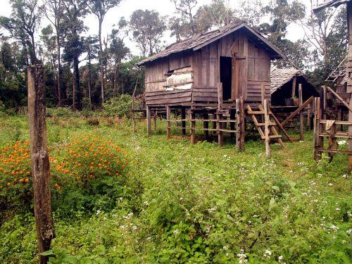 krūvos būstas,Crannog,nameliai,namelis,kajutė,medinis,shack