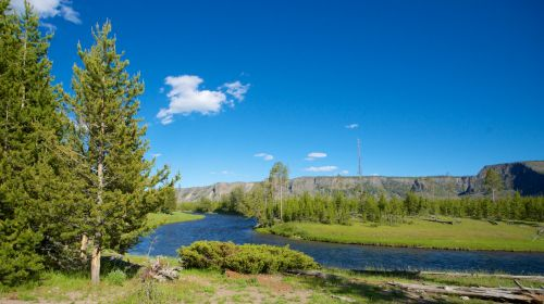 upelis, kreivė, visžalis, žalias, nacionalinis & nbsp, parkas, gamta, parkas, upė, upė & nbsp, lenkimas, srautas, dykuma, vėjas, Vajomingas, geltonas akmuo, yellowstone & nbsp, nacionalinis & nbsp, parkas, pušis šalia upės