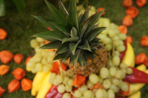 ananasai,vaisiai,egzotiškas