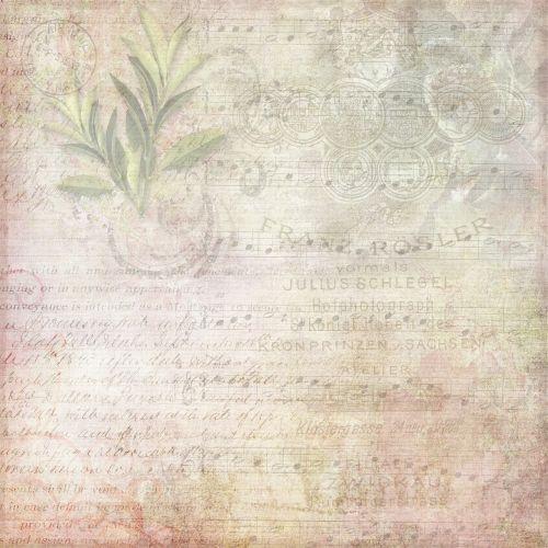 rožinis,rožė,rašysenos,tekstas,gėlių,fonas,romantiškas,minkštas,Scrapbooking,damaskas,modelis,romantika,kvadratas,šablonas,sūkurys,stilius,dizainas,ornamentas,dekoratyvinis,elegantiškas,tekstūra,puslapis,popierius