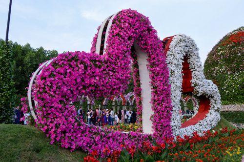 rožinės gėlės,baltos gėlės,sodas,širdies formos gėlės,gėlės širdis,širdis,gėlių,gėlė,sezonas
