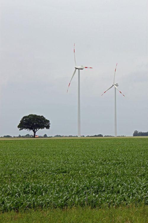 pinwheel, energija, vėjo energija, vėjo energija, Vėjo turbina, dabartinis, atsinaujinanti energija, kraštovaizdis
