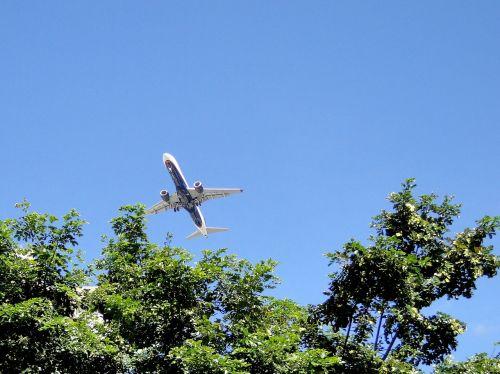 Lėktuvas, Pakilimas, Mėlynas Dangus