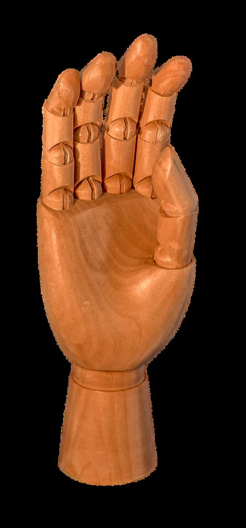 skaidrus,skaidrus fonas,mediena,ranka,pirštas,nykštukė,nariai