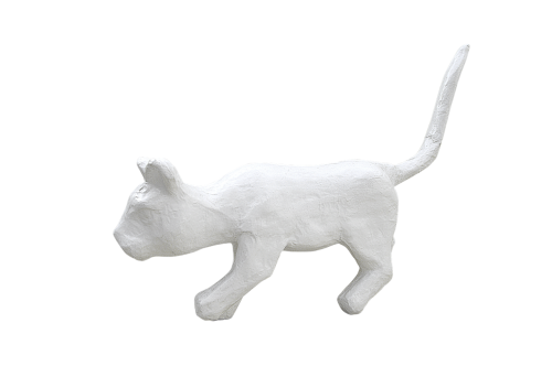 png,balta katė,katė,tinkas,balta spalva,balta
