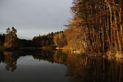 tvenkinys,paviršius,saulėlydis,atspindys,medžiai,miškas,tvenkinio kraštas,tvenkinys,kačerovec,ledenice