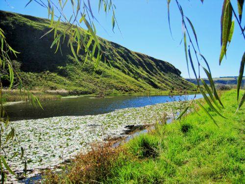 kalnai, aukštas, žolė, žalias, tvenkinys, Drakensbergas, tvenkinys kalnuose