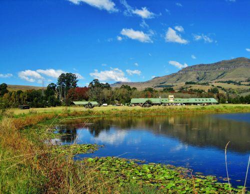 kalnai, aukštas, žolė, žalias, tvenkinys, Drakensbergas, tvenkinys su atspindžiu