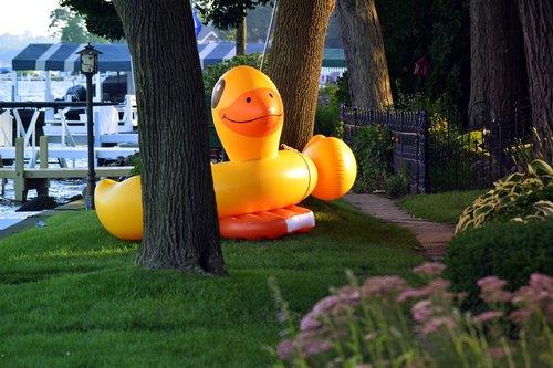 baseinas plūdės, lengvas, gyvūnas, antis, Ducky, milžinas, geltona, vejos, kelias, vasara, ežeras, Lakeside, veikla, veikla, pramogų, linksma, juokinga, paukštis