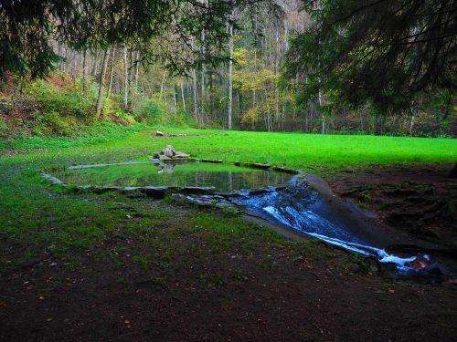 baseinai, ežeras, vandens, idilė, upė, Bach, Elsach, Baden-Viurtembergas, swabian alb, kapas stetten
