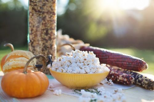 kukurūzai,ruduo,kritimas,kukurūzai,kukurūzai,derlius,moliūgas,sezoninis,Indijos kukurūzai