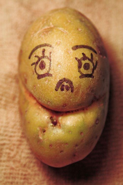 bulvė, komiškas, veidas, traukiamas, bulvių veidas