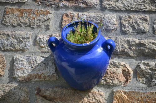 keramika, amatų, mėlynas, gėlė & nbsp, puodą, apdaila, amatų keramikos dirbiniai