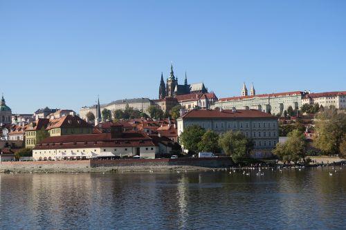 prague,ruduo,vltava,miestas,Čekijos Respublika,kraštovaizdis,prague pilis,respublika,medžiai,pastatas