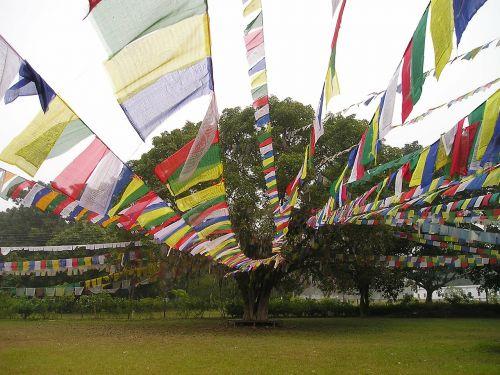 maldos vėliavos,budizmas,lumpini,Nepalas
