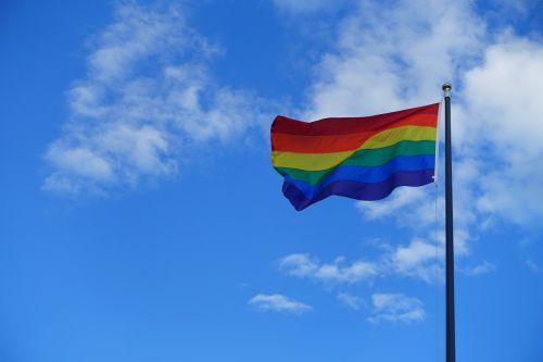 pasididžiavimas,gėjus,pasididžiavimas vėliava,vaivorykštė,meilė,pasididžiavimo teisės,laisvė,homoseksualumas