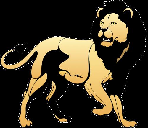 pasididžiavimas,liūtas,gyvūnas,uodega,gynybinis,Žiurkė,gynyba,laukinė gamta,kačių,plėšrūnas,mėsėdis,leo,didingas,agresyvus,nemokama vektorinė grafika