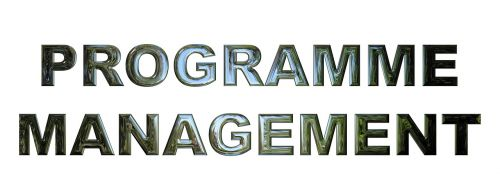 programos valdymas,verslas,valdymas,vadybininkas,planavimas,darbas,profesionalus