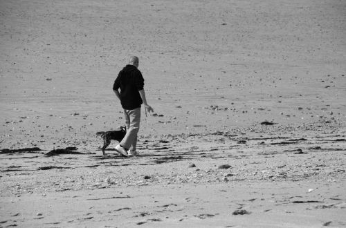 vaikščioti, šuo, atsipalaiduoti, vienatvė, asmuo, vyras, gamta, laisvalaikis, vaikščioti, vedžioti šunį