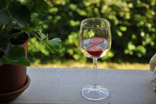 prosecco,braškės,šampanas,stiklas,vynas,gerti,alkoholis,prabanga,meilė,šiuolaikiška,aperityvas,jausmingas,diena,atsipalaiduoti,sveikata,namai,romantiškas,balkonas