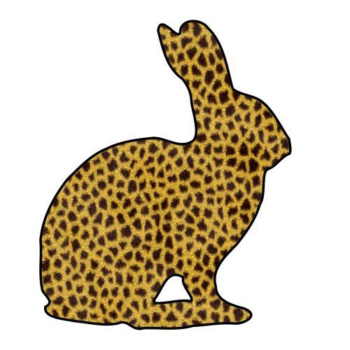 zuikis, triušis, siluetas, piešimas, gyvūnas, kailis, Puma, izoliuotas, balta, fonas, puma bunny