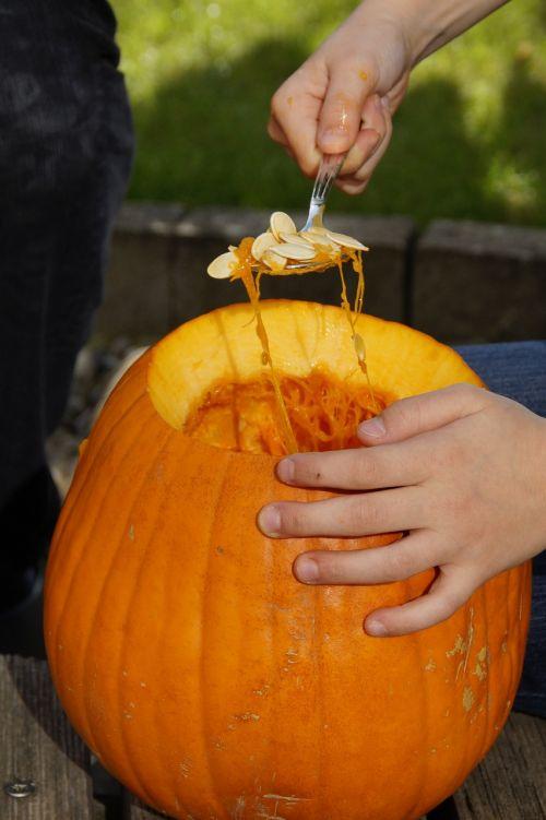 moliūgas,Halloween,ruduo,oranžinė,daržovės,išskaptuoti,Spalio 31 d .,dangtelis,drožyba moliūgų,iškirpti moliūgo vaiduoklis,Halloweenkuerbis,moliūgų vaiduoklis,rudens apdaila,Diy moliūgų vaiduoklis,iškirpti,Spalio mėn,Moliūgas žibintas,tuščia,interjeras,vaikas,pokštas arba saldainis
