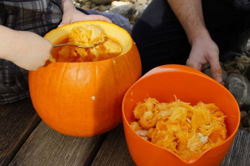 moliūgas,Halloween,ruduo,oranžinė,daržovės,išskaptuoti,Spalio 31 d .,dangtelis,drožyba moliūgų,iškirpti moliūgo vaiduoklis,Halloweenkuerbis,moliūgų vaiduoklis,rudens apdaila,Diy moliūgų vaiduoklis,iškirpti,Spalio mėn,Moliūgas žibintas,tuščia,vidinis,vaikas,pokštas arba saldainis,išsemti,išvalyti,minkštimas