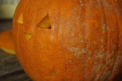 moliūgas,moliūgai,oranžinė,šviesus,ruduo,rudens apdaila,sezoninis,dekoratyvinis,apdaila,padėka,Halloween,Halloweenkuerbis,moliūgų vaiduoklis,veidas,iškirpti veidą,iškirpti moliūgo vaiduoklis,Diy moliūgų vaiduoklis