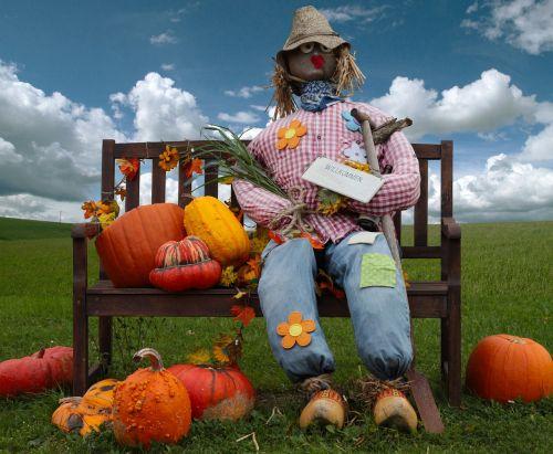 moliūgas,šiaudų moteris,lėlės,deko,šiaudai,ruduo,sodo apdaila,Šiaudinis zmogus,dekoratyviniai skvošaičiai,moliūgas,rudens apdaila,spalvinga,apdaila,muitinės,rudens pradžia,padėka,bankas,dangus,metų laikas,moliūgai,rudens motyvas,Halloweenkuerbis,oranžinė,skrybėlę
