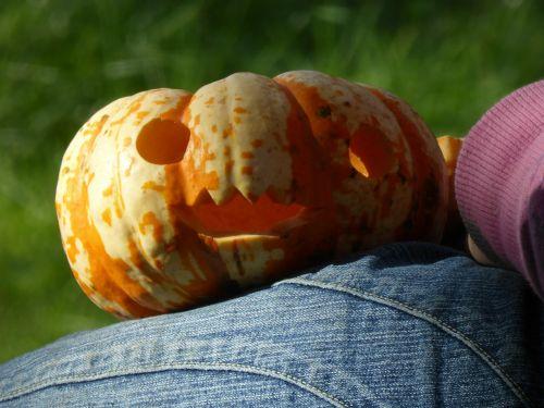 moliūgas,žaisti,Tinker,Halloween,ruduo,out