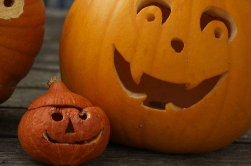moliūgas,moliūgų veidas,Halloween,veidas,ruduo,linksma,apdaila,moliūgų vaiduoklis,Halloweenkuerbis,fash,vaikai,Moliūgas žibintas,šviesus,oranžinė,įžūlus,vaikas,dekoratyvinis,sezoninis,iškirpti moliūgo vaiduoklis,rudens apdaila,Spalio 31 d .,Diy moliūgų vaiduoklis,moliūgai,mažas,didelis