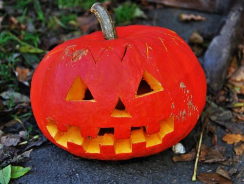 moliūgų galva,Halloween,padėka,apdaila,juokinga,oranžinė spalva,sodo apdaila,fash,gartendeko,moliūgas,metų laikas,ruduo,rudens apdaila,šviesus,Halloweenkuerbis,moliūgų vaiduoklis,Spalio mėn,rudens motyvas,daržovės,Žemdirbystė
