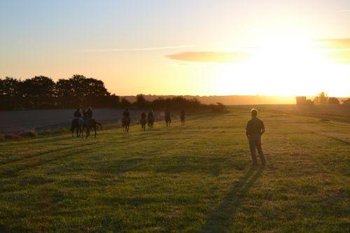 lenktynių žirgais,arkliai,mokymas,rytas,lambourn,saulėtekis,naudotis