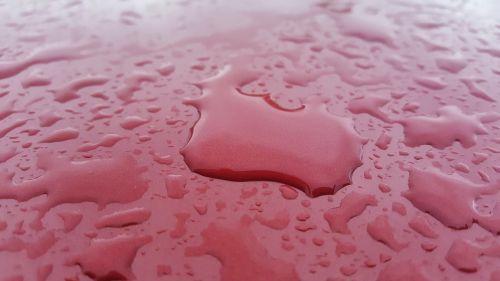 lietus,lietaus lašai,lietus automobiliu,šlapias,lietus,vanduo,oras,lašeliai,raudona,griauna,drėgna,drėgnas,plauti,rasa