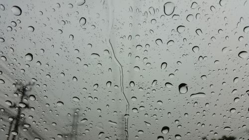 lietus,lietus,vanduo,šlapias,lašas,burbulas,lašelis,švarus,rasa