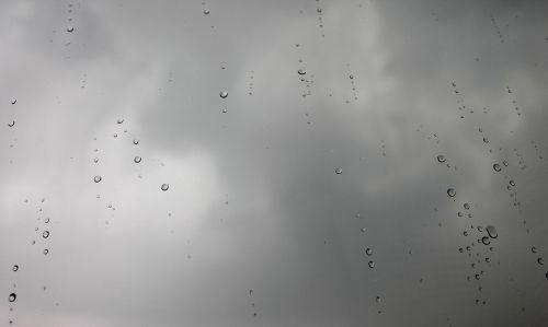 lietus,po lietaus,lašas,lietaus kritimas,lašai,tamsi,tamsūs debesys,fonas,lašai vandens,lietaus lašai,dangus,gamta,debesys