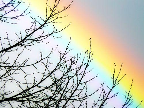 vaivorykštė,dangus,spektras,vaivorykštės spalvos,farbenspiel,gamtos reiškinys,gamta,refrakcija,oras,spalva,kraštovaizdis,natūralus spektaklis