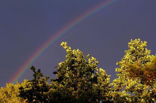 vaivorykštė,dangus,nuotaika,gamta,spalva,natūralus spektaklis,spektras