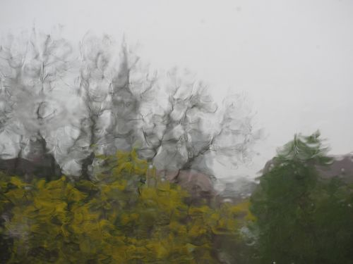 lietingas oras,ulm,lietus,audra,ulmi katedra,rudens oras,oras