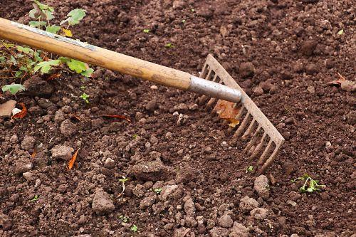rake,sodininkystė,sodas,Žemdirbystė,darbas,įrankis,sodininkas,įranga,lauke,gręžimas,kaimas,dirvožemis,auginimas,žemė,paviršius,žemė,tekstūra,žemė,sodinti,niekas,ruda,auginami,purvas,žemės ūkio paskirties žemė,weeding