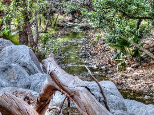 srautas, srautas, vanduo, srautas, miškas, medžiai, gamta, lauke, kaimas, Šalis, upė, akmenys, rambling stream