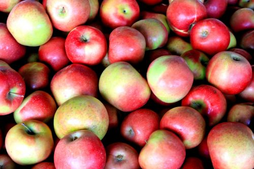obuolys, raudoni & nbsp, obuoliai, vaisiai, ūkininkų & nbsp, rinka, obelis & nbsp, kalnas, raudoni obuoliai