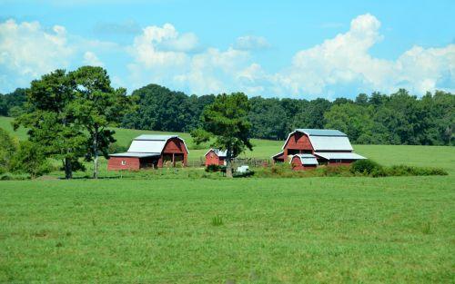raudona, tvartas, žemės ūkio paskirties žemė, kaimas, kraštovaizdis, Žemdirbystė, ūkis, kaimas, vaizdingas, raudona svirnas