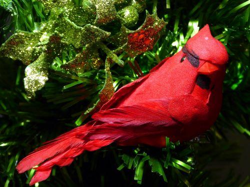 Kalėdos, xmas, paukštis, kardinolas, ornamentas, Holly, blizgučiai, glittery, Iš arti, raudona kardinolas xmas medyje