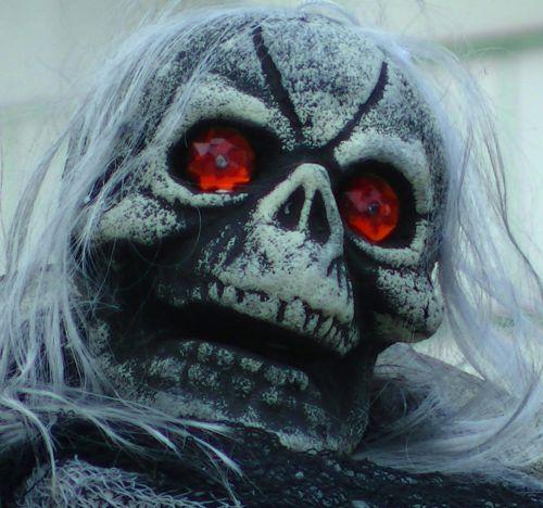 baugus, skeletas, skeletas, kaukolė, kaukolės, creepy, įsiuvas, gory, siaubas, Halloween, vaiduoklis, vaiduoklis, vampyras, ghouls, Zombie, zombiai, baimė, bauginantis, košmaras, košmarai, velnias, velniška, raudonoji akių kaukė