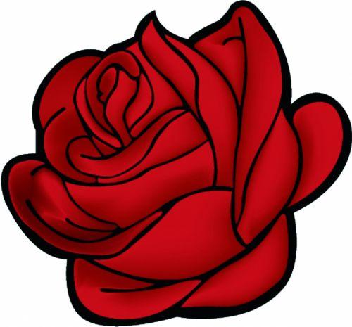 rožė, raudona, fonas, gėlė, objektas, budas, Iš arti, meilė, rasa, rožė & nbsp, gėlė, izoliuotas, pasveikinimas, rožės & nbsp, žiedlapių, rožė & nbsp, uždaryti & nbsp, aukštyn, rožė & nbsp, izoliuota & nbsp, balta, viena gėlė, gėlių, raudona & nbsp, rožė, žiedlapis, jubiliejus, rožė & nbsp, didžioji dalis, raudona rožė uždaryti