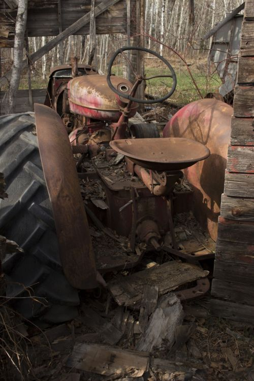 raudona, rusvas, ūkis, traktorius, raudonasis rusvas žemės ūkio traktorius